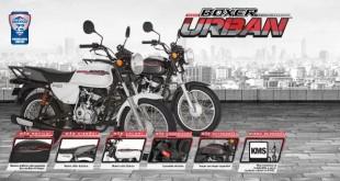 Boxer Urban Modelos blanco y negro