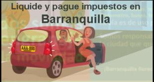 liquidar-pago-impuestos-vehiculos-barranquilla-atlantico-de-carros-y-motos