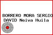 BORRERO MORA SERGIO DAVID Neiva Huila