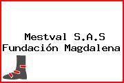 Mestval S.A.S Fundación Magdalena