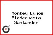 Monkey Lujos Piedecuesta Santander