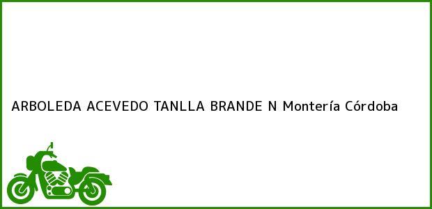 Teléfono, Dirección y otros datos de contacto para ARBOLEDA ACEVEDO TANLLA BRANDE N, Montería, Córdoba, Colombia