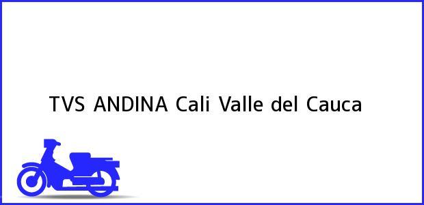 Teléfono, Dirección y otros datos de contacto para TVS ANDINA, Cali, Valle del Cauca, Colombia