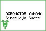 AGROMOTOS YAMAHA Sincelejo Sucre