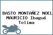 BASTO MONTAÑEZ NOEL MAURICIO Ibagué Tolima