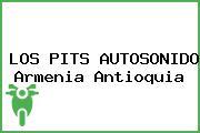 LOS PITS AUTOSONIDO Armenia Antioquia