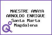 MAESTRE AMAYA ARNOLDO ENRIQUE Santa Marta Magdalena
