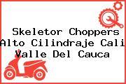 Skeletor Choppers Alto Cilindraje Cali Valle Del Cauca