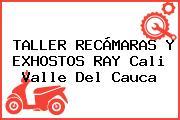 TALLER RECÁMARAS Y EXHOSTOS RAY Cali Valle Del Cauca