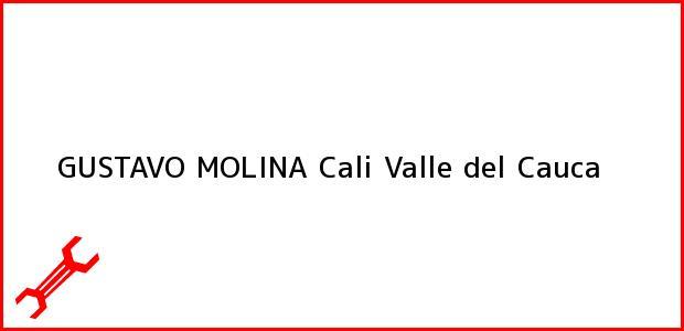 Teléfono, Dirección y otros datos de contacto para GUSTAVO MOLINA, Cali, Valle del Cauca, Colombia