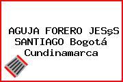 AGUJA FORERO JESºS SANTIAGO Bogotá Cundinamarca