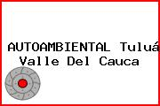 AUTOAMBIENTAL Tuluá Valle Del Cauca