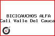 BICICAUCHOS ALFA Cali Valle Del Cauca
