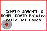 CAMELO JARAMILLO RONEL DAVID Palmira Valle Del Cauca