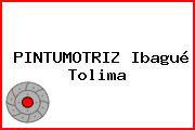 PINTUMOTRIZ Ibagué Tolima